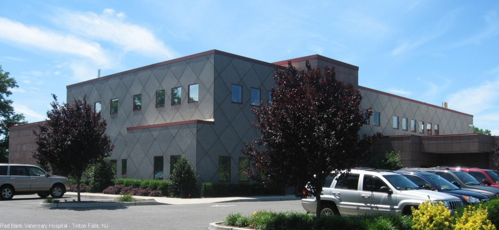 Stone Panels International Red Bank Veterinary Hospital